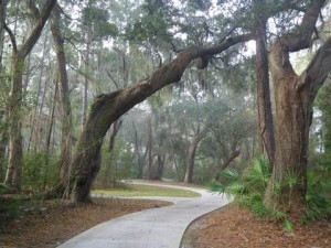 Bicycle path on Jekyll Island