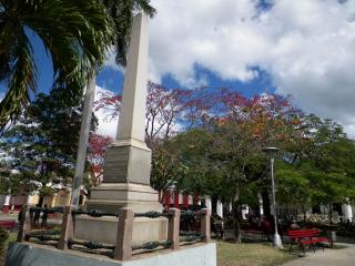 tn_460-parque-vidal
