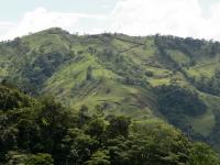 tn_256 Mountain