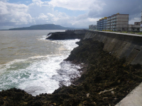 tn_243-along-the-Malecon