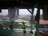 tn_251-Rainy-Day