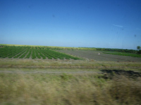 tn_536-Farming-country-on-the-road-to-Holguin