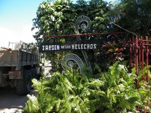 tn_76-Jardin-de-los-Helechos