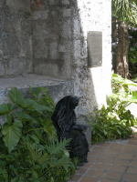 tn_524 Mother Theresa sculpture