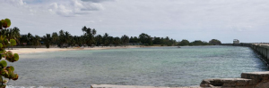 tn_615 Playa Giron resort