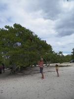 tn_617 Rescuing the kite at Playa Hiron